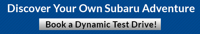 DynamicTestDrive